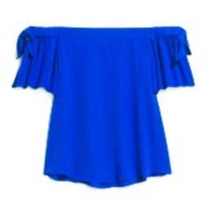 Blue Blouse. Off the shoulder.
